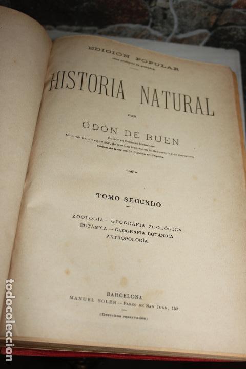 Libros antiguos: HISTORIA NATURAL POR ODON DE BUEN. 2 TOMOS. EDITORIAL MANUEL SOLER 1897. OBRA MUY ILUSTRADA.UNA JOYA - Foto 9 - 69373301