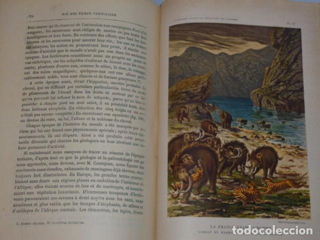 Libros antiguos: LE MONDE AVANT LA CRÉATION DE L´HOMME (1886) - Foto 9 - 69679745