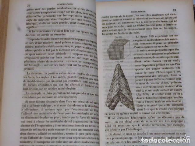 Libros antiguos: TRAITÉ ÉLÉMENTAIRE D´HISTOIRE NATURELLE PHARMACEUTIQUE ET MÉDICALE.... TOME SECOND ( 1843) - Foto 3 - 77374029