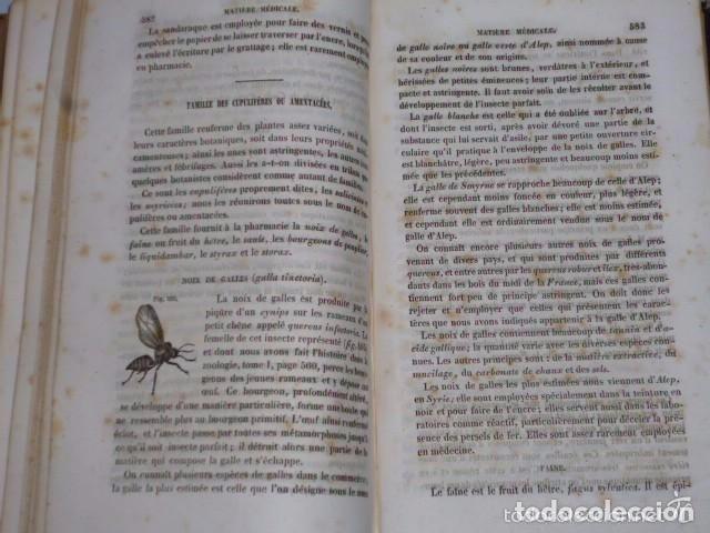 Libros antiguos: TRAITÉ ÉLÉMENTAIRE D´HISTOIRE NATURELLE PHARMACEUTIQUE ET MÉDICALE.... TOME SECOND ( 1843) - Foto 7 - 77374029