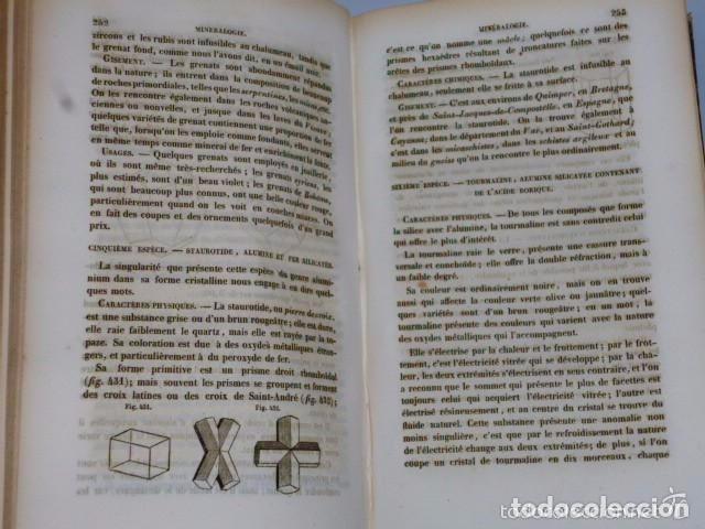 Libros antiguos: TRAITÉ ÉLÉMENTAIRE D´HISTOIRE NATURELLE PHARMACEUTIQUE ET MÉDICALE.... TOME SECOND ( 1843) - Foto 10 - 77374029