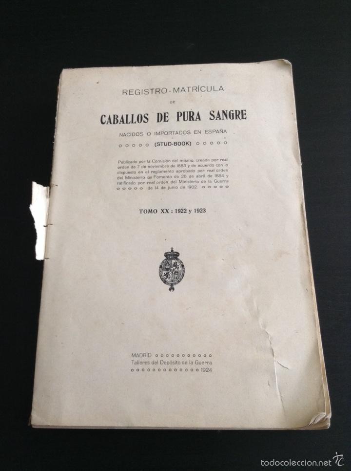 LIBRO REGISTRO MATRÍCULA CABALLOS DE PURA SANGRE 1922 - 1923 (Libros Antiguos, Raros y Curiosos - Bellas artes, ocio y coleccionismo - Otros)