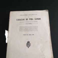 Libros antiguos: LIBRO REGISTRO MATRÍCULA CABALLOS DE PURA SANGRE 1922 - 1923. Lote 77520509