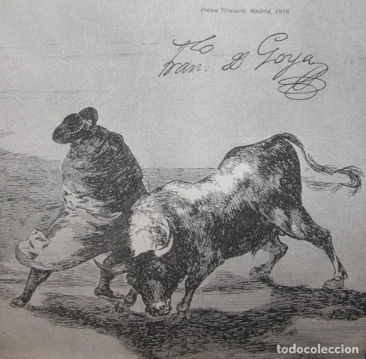 Libros antiguos: LIBRO TAUROMAQUIA FRANCISCO DE GOYA EN ESPAÑOL E ITALIANO 77 PAGINAS 33 ESTAMPAS DEL ORIGINAL - Foto 7 - 78316797