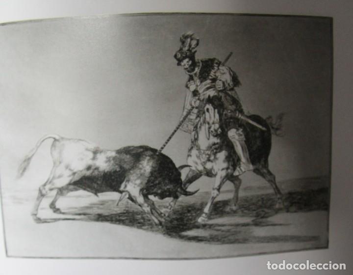 Libros antiguos: LIBRO TAUROMAQUIA FRANCISCO DE GOYA EN ESPAÑOL E ITALIANO 77 PAGINAS 33 ESTAMPAS DEL ORIGINAL - Foto 8 - 78316797