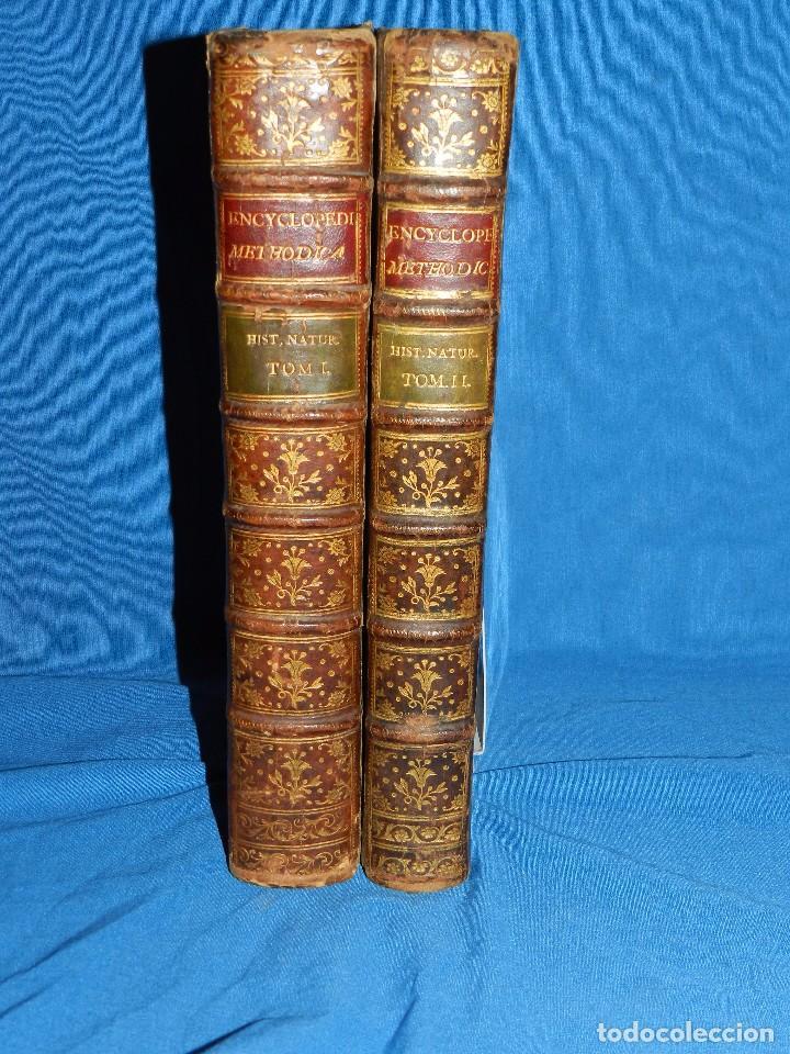 Libros antiguos: (MF) D GREGORIO MANUEL SANZ Y CHANAS - HISTORIA NATURAL DE LOS ANIMALES MDCCLXXXVIII (COMPLETO) - Foto 2 - 79003741