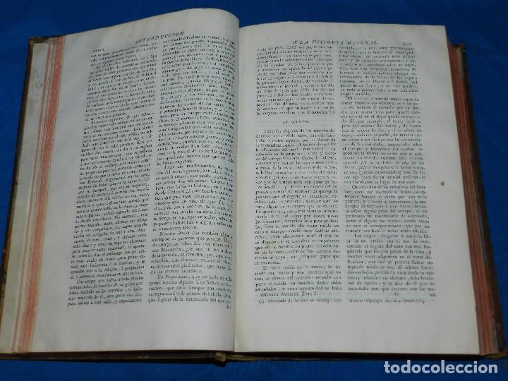Libros antiguos: (MF) D GREGORIO MANUEL SANZ Y CHANAS - HISTORIA NATURAL DE LOS ANIMALES MDCCLXXXVIII (COMPLETO) - Foto 5 - 79003741