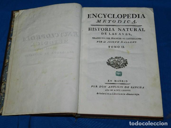 Libros antiguos: (MF) D GREGORIO MANUEL SANZ Y CHANAS - HISTORIA NATURAL DE LOS ANIMALES MDCCLXXXVIII (COMPLETO) - Foto 11 - 79003741