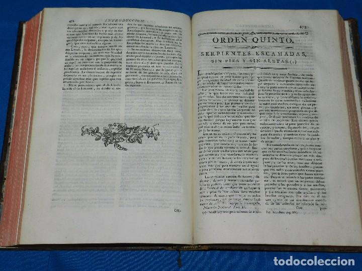 Libros antiguos: (MF) D GREGORIO MANUEL SANZ Y CHANAS - HISTORIA NATURAL DE LOS ANIMALES MDCCLXXXVIII (COMPLETO) - Foto 13 - 79003741
