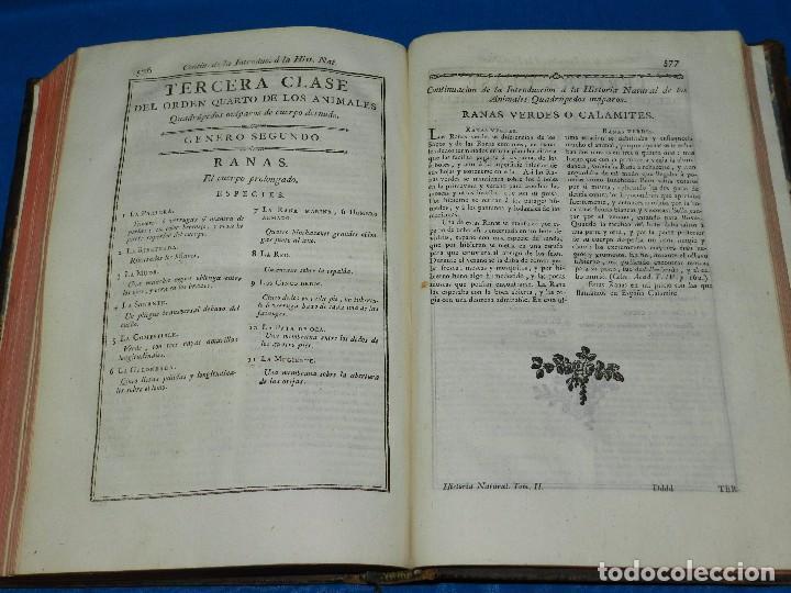Libros antiguos: (MF) D GREGORIO MANUEL SANZ Y CHANAS - HISTORIA NATURAL DE LOS ANIMALES MDCCLXXXVIII (COMPLETO) - Foto 14 - 79003741
