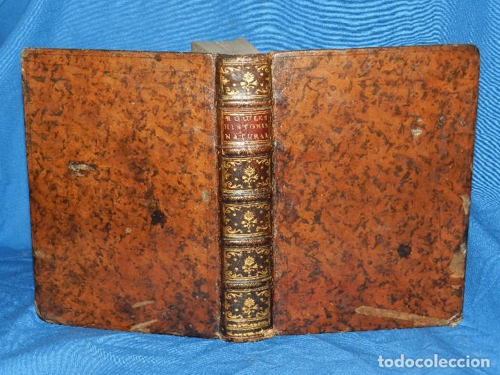 Libros antiguos: (MF) D GUILLERMO BOWLES - INTRODUCCION A LA HISTORIA NATURAL Y A LA GEOGRAFIA FISICA DE ESPAÑA 1782 - Foto 3 - 80635098
