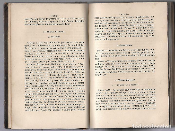 Libros antiguos: MANUAL DEL CAZADOR CUBANO. ENRIQUE MANERA Y CAO. EDITOR MANUEL SAURI, BARCELONA. 1886 - Foto 5 - 81734832