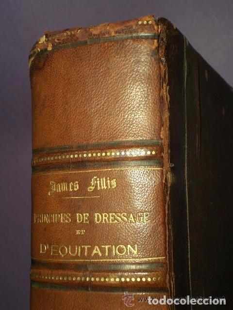 Libros antiguos: Principes de dressage et d équitation - Foto 4 - 82055912