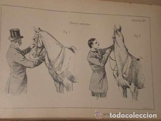 Libros antiguos: Principes de dressage et d équitation - Foto 9 - 82055912