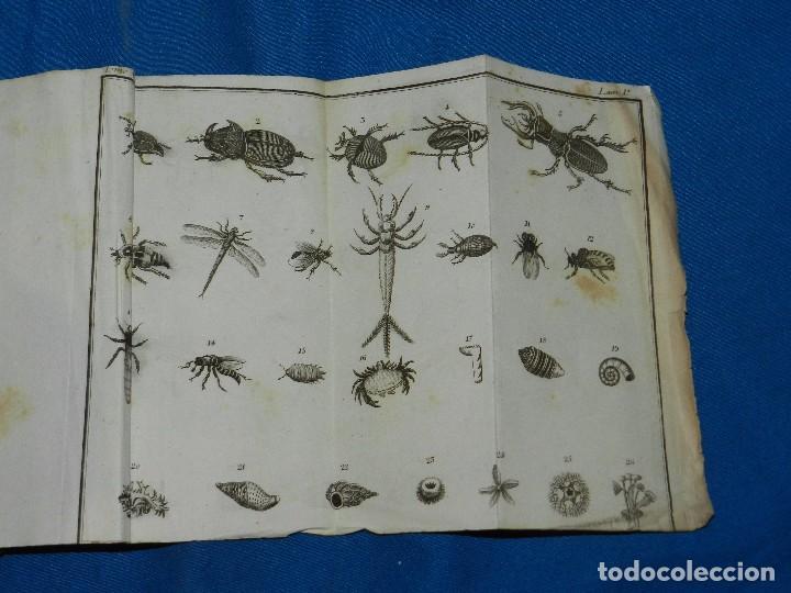 Libros antiguos: (MF) J F DURROCA - CONVERSACIONES DE UN PADRE CON SUS HIJOS SOBRE LA HISTORIA NATURAL 1811 COMPLETO - Foto 7 - 83370660