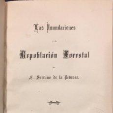 Libros antiguos: LAS INUNDACIONES Y LA REPOBLACIÓN FORESTAL. Lote 76254870