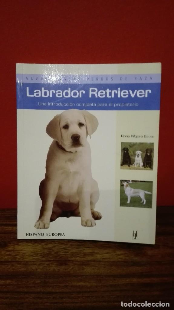 GUIA LABRADOR RETRIEVER (Libros Antiguos, Raros y Curiosos - Ciencias, Manuales y Oficios - Otros)