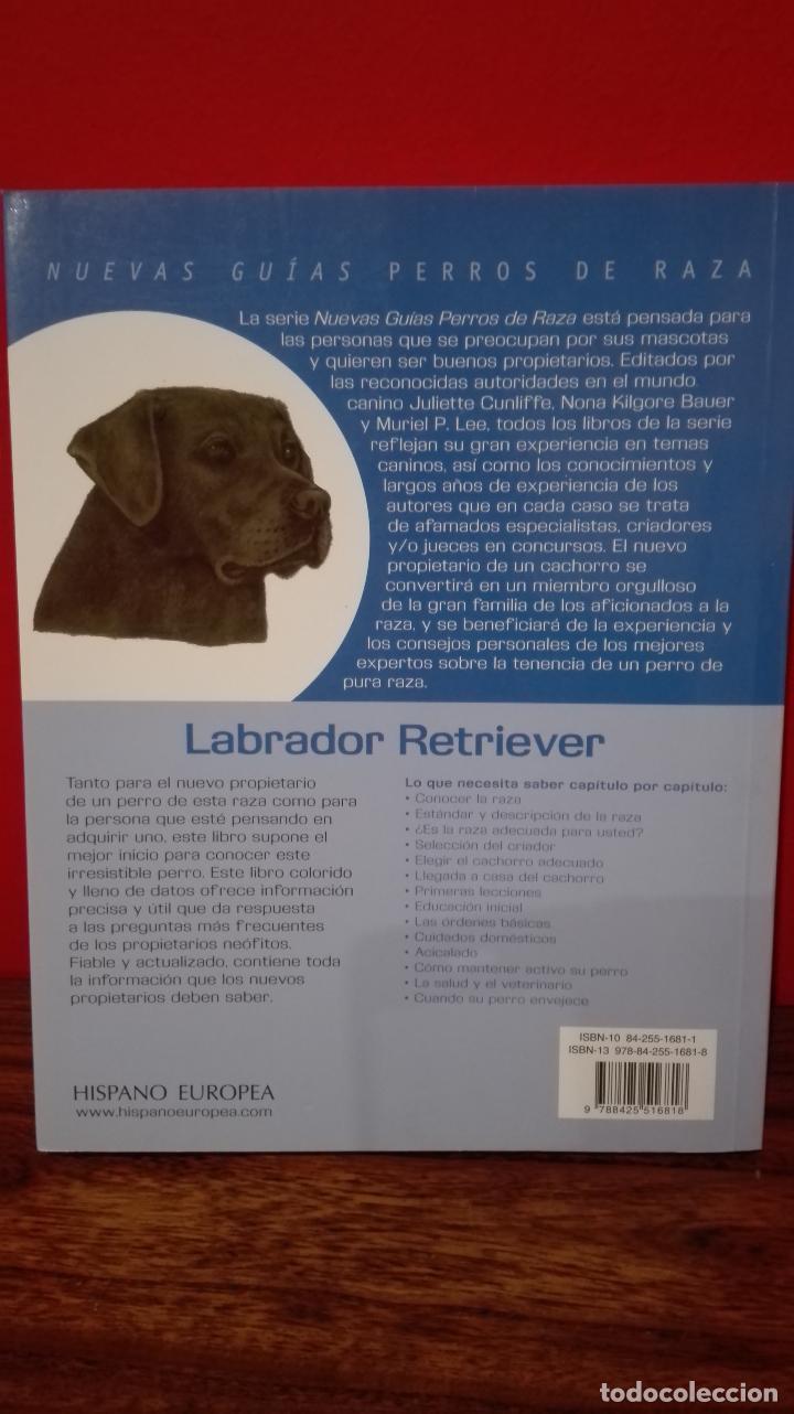 Libros antiguos: Guia labrador retriever - Foto 2 - 84992364