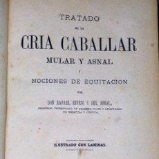 Libros antiguos: TRATADO DE LA CRÍA CABALLAR, MULAR Y ASNAL Y NOCIONES DE EQUITACIÓN (1881). Lote 86413684