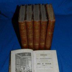 Libros antiguos: (MF) M STURM - REFLEXIONES SOBRE LA NATURALEZA ESCRITAS EN ALEMNA, QUINTA EDICION, MADRID 1842. Lote 86658732