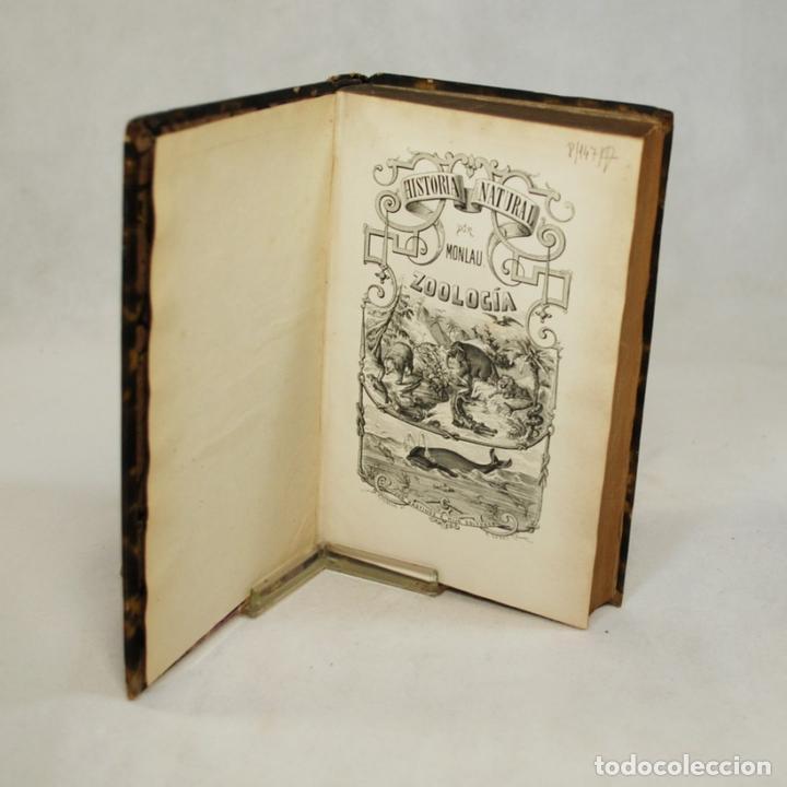 Libros antiguos: COMPENDIO DE HISTORIA NATURAL - JOSÉ MONLAU - Foto 4 - 74675170