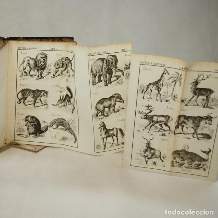 Libros antiguos: COMPENDIO DE HISTORIA NATURAL - JOSÉ MONLAU - Foto 5 - 74675170