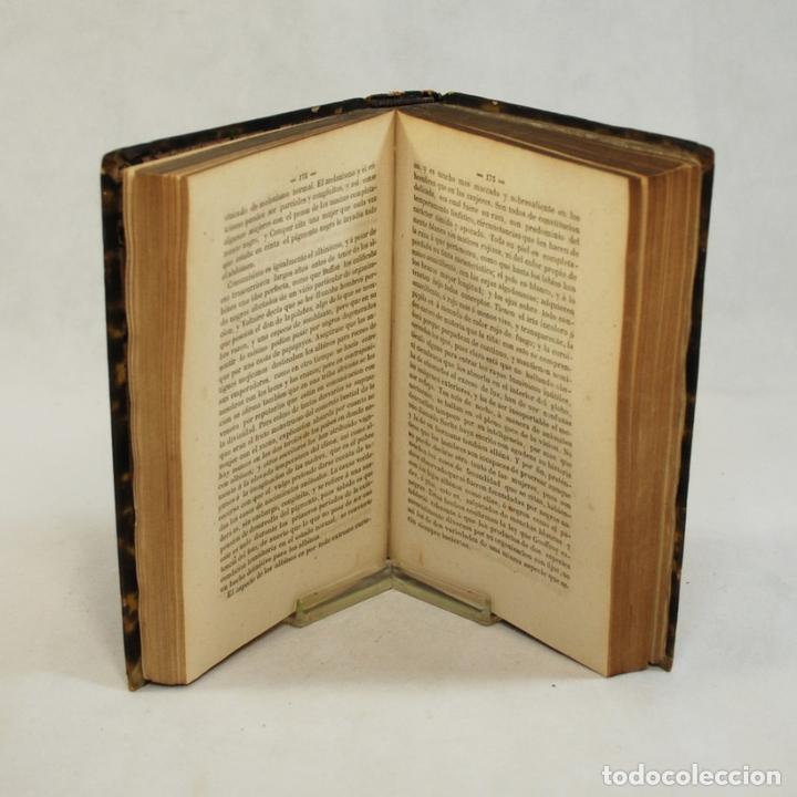 Libros antiguos: COMPENDIO DE HISTORIA NATURAL - JOSÉ MONLAU - Foto 6 - 74675170