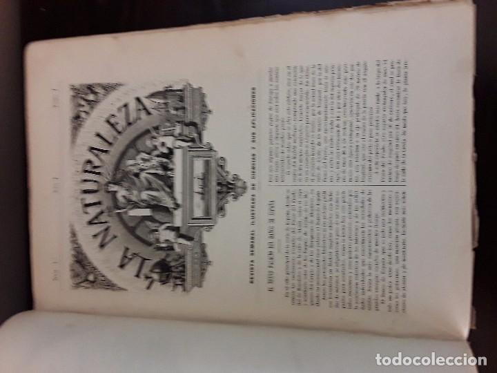 Libros antiguos: LA NATURALEZA PRIMER AÑO 1890 PRIMER SEMESTRE MADRID FUENTES Y CAPDEVILLE - Foto 3 - 87259548
