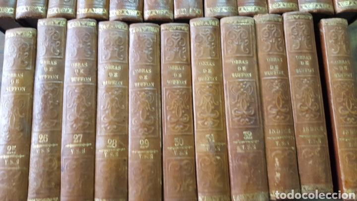 Libros antiguos: BUFFON: OBRAS COMPLETAS, 35 TOMOS MELLADO 1847-1850 SIN LÁMINAS, 2 MAPAS EN T1. - Foto 2 - 87562260