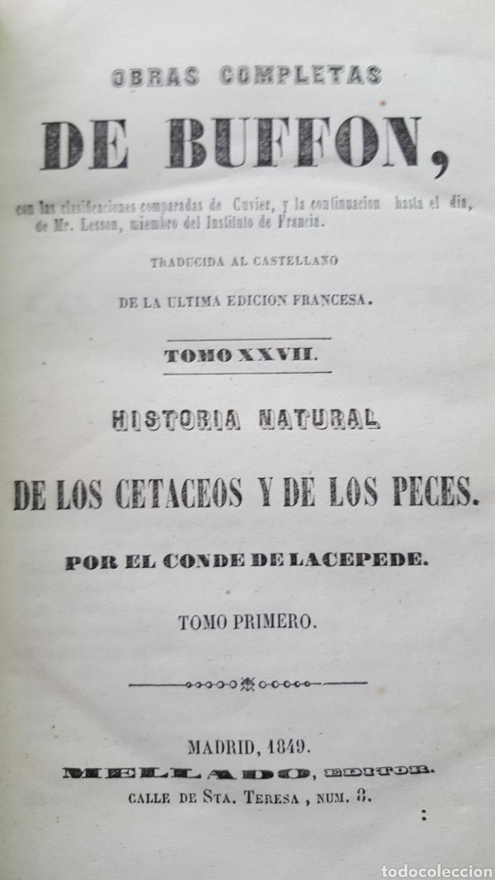 Libros antiguos: BUFFON: OBRAS COMPLETAS, 35 TOMOS MELLADO 1847-1850 SIN LÁMINAS, 2 MAPAS EN T1. - Foto 5 - 87562260