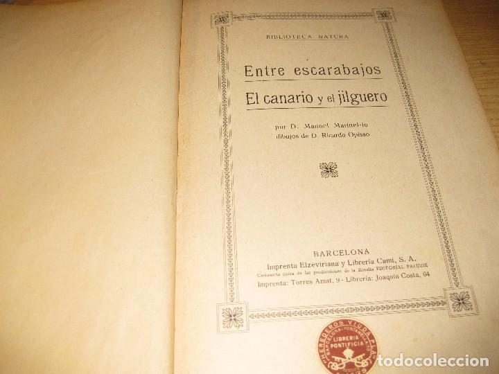 Libros antiguos: entre escarabajos , el canario y el jilguero . marinel.lo . il. opisso . col. natura - Foto 2 - 142307877