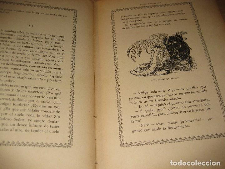Libros antiguos: entre escarabajos , el canario y el jilguero . marinel.lo . il. opisso . col. natura - Foto 5 - 142307877