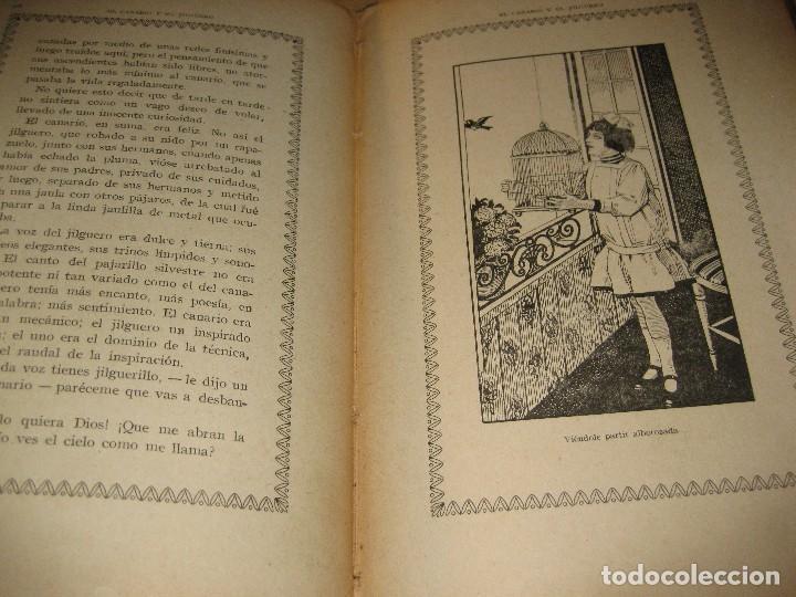 Libros antiguos: entre escarabajos , el canario y el jilguero . marinel.lo . il. opisso . col. natura - Foto 6 - 142307877