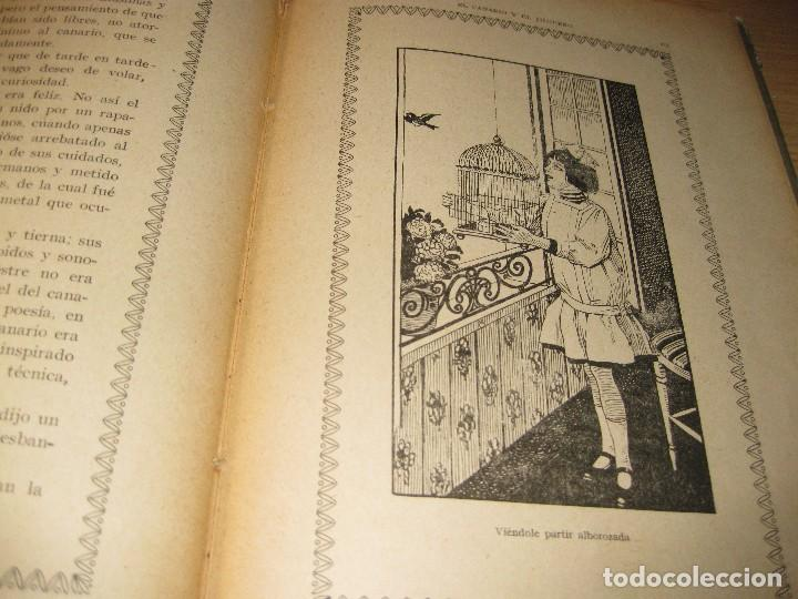 Libros antiguos: entre escarabajos , el canario y el jilguero . marinel.lo . il. opisso . col. natura - Foto 9 - 142307877