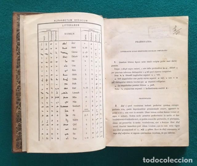 Libros antiguos: Gismondi, Henrico (S.J.), Linguae Syriacae. Grammatica et chrestomathia cum glosario scholis... - Foto 2 - 90825245