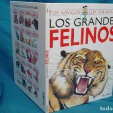 Libros antiguos: LOS GRANDES FELINOS - TUS AMIGOS LOS ANIMALES - GLOBUS - ILUSTRACIONES SUSAETA 1994. Lote 91015800
