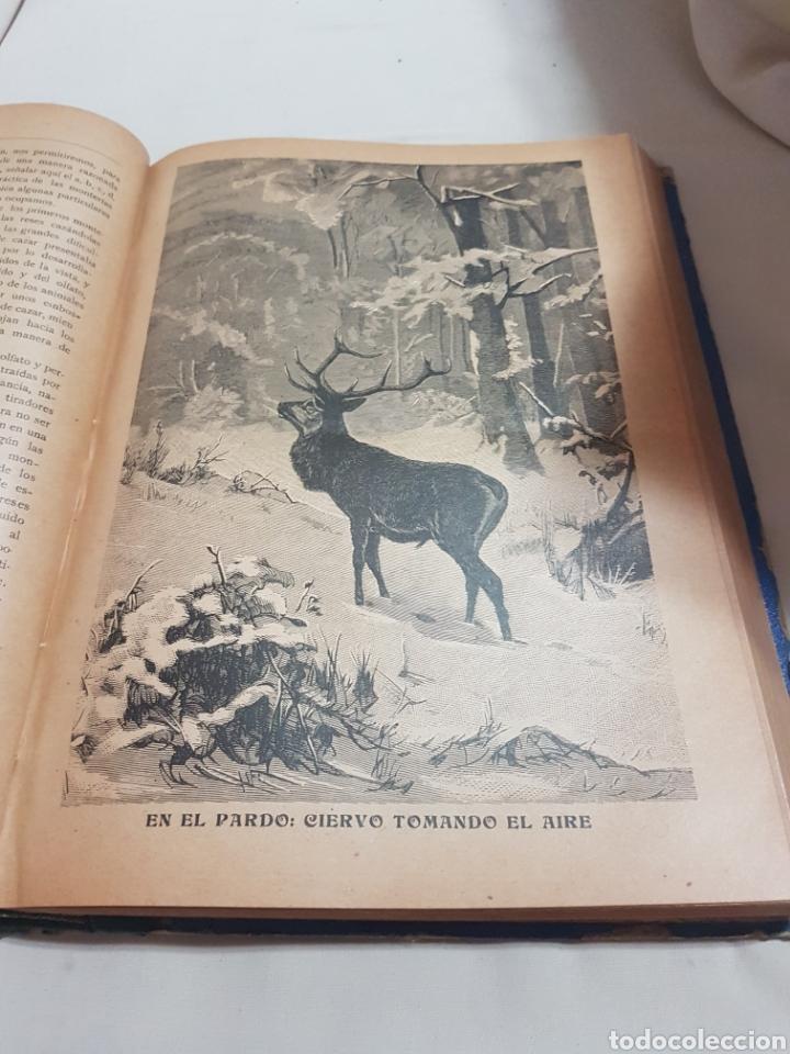 Libros antiguos: 3 tomos Revista la caza ilustrada núm 1 . 2 . 3 . 2° edición año 1899 . 1900-901 . 1902-903 - Foto 5 - 91336119