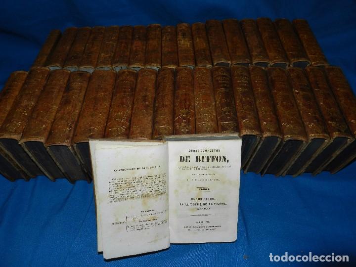(MF) OBRAS COMPLETAS DE BUFFON , COMPLETA 35 VOLUMENES , MADRID 1847 - HISTORIA NATURAL (Libros Antiguos, Raros y Curiosos - Ciencias, Manuales y Oficios - Otros)
