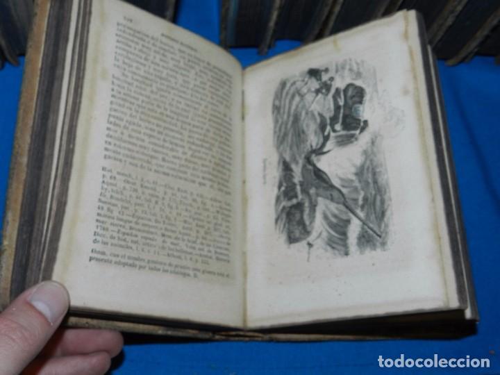 Libros antiguos: (MF) OBRAS COMPLETAS DE BUFFON , COMPLETA 35 VOLUMENES , MADRID 1847 - HISTORIA NATURAL - Foto 6 - 91440780