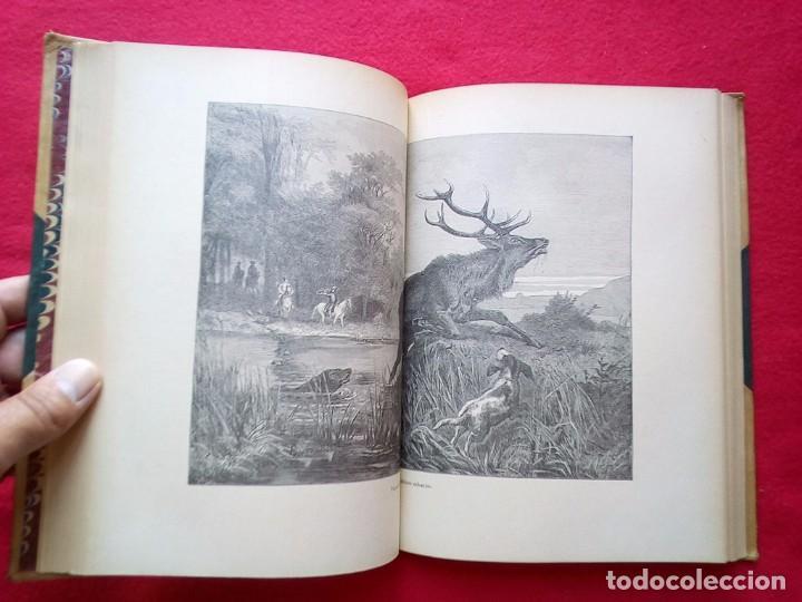 Libros antiguos: 1910 CAZA NARRACIONES DE UN MONTERO GRANDES CACERIAS ESPAÑOLAS CINEGETICA 3 TOMOS 26 CMS - Foto 11 - 91607390