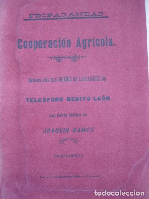 COOPERACION AGRICOLA BENITO LEON GREMIO LABRADORES DE BENAVENTE ZAMORA 1908.16 PG (Libros Antiguos, Raros y Curiosos - Pensamiento - Otros)