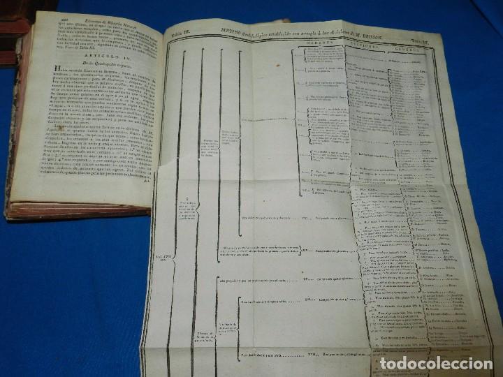 Libros antiguos: (MF) M DE FOURCROY - ELEMENTOS DE HISTORIA NATURAL Y DE QUIMICA , 3 TOMOS, SEGOVIA 1793 - Foto 5 - 92819045