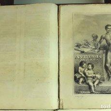 Alte Bücher - TRATADO DE ANATOMÍA PICTÓRICA. ANTONIO Mª ESQUIVEL. IMPRENTA F. ANDRÉS Y CIA. 1848. - 93228210