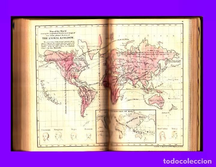 Libros antiguos: GOLDSMITH`S GRAMMAR OF GEOGRAPHY 1820 - Foto 5 - 93786640