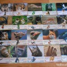 Libros antiguos: MIS ANIMALES FAVORITOS-20 LIBROS. Lote 94326938