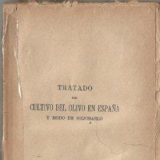 Libros antiguos: TRATADO DEL CULTIVO DEL OLIVO EN ESPAÑA A.1921. Lote 94538859