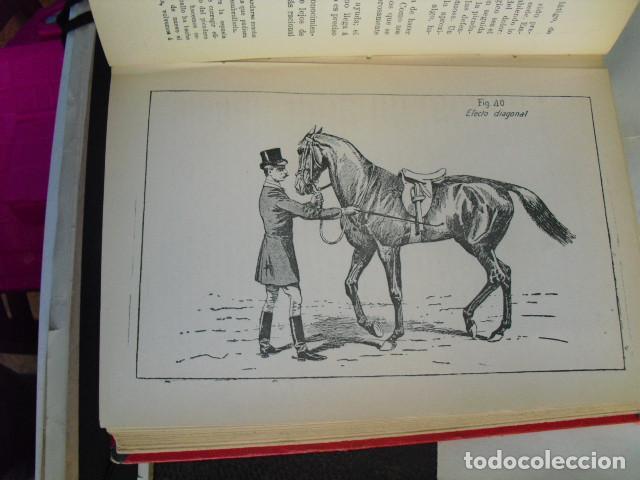 Libros antiguos: 1901 PRINCIPIOS DE DOMA Y EQUITACIÓN J. FILLIS - Foto 4 - 95944019