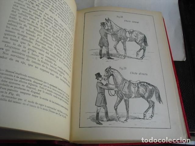 Libros antiguos: 1901 PRINCIPIOS DE DOMA Y EQUITACIÓN J. FILLIS - Foto 5 - 95944019