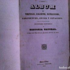 Libros antiguos: LIBRO DIOS Y SUS OBRAS ALBUM TORTUGAS LAGARTOS BATRACIANOS. 1842. Lote 96104067