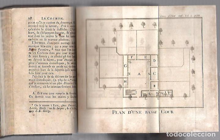 Libros antiguos: CURSO DE HISTORIA NATURAL. TOMO SEGUNDO. 1770. PARIS. GRABADOS. CHEZ DESAINT. LEER. VER - Foto 5 - 96486427